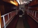 U Boot 995 Kojen
