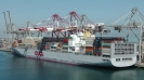 Containerschiffe :: OOCL Tokyo