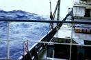 Auf See :: Fleesensee