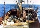 Auf See :: Junger Pionier Logger