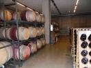 Weinführung mit Verkosten