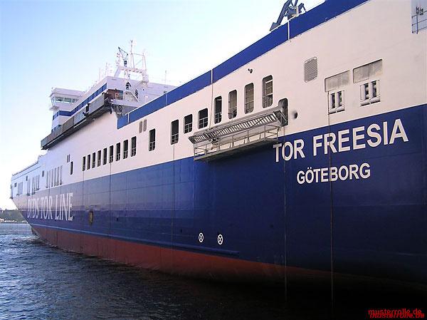 Tor-Freesia