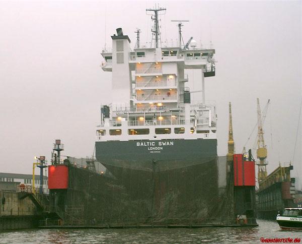 Baltic-Swan