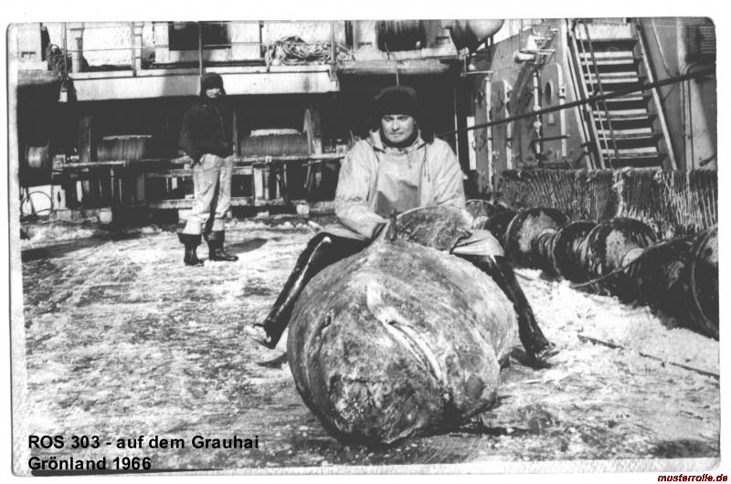 ROS 303 Friedrich Wolf
