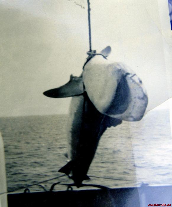 23.KIB DSR Seeleute