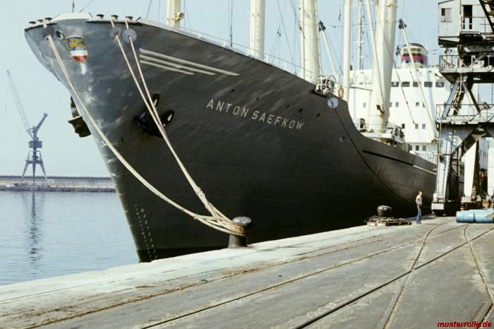 Anton Saefkow